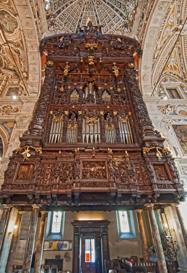 Madonna organo 3